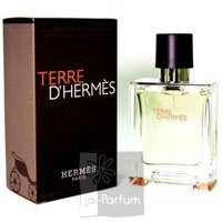 Terre D`Hermes EDT 200 ml spray